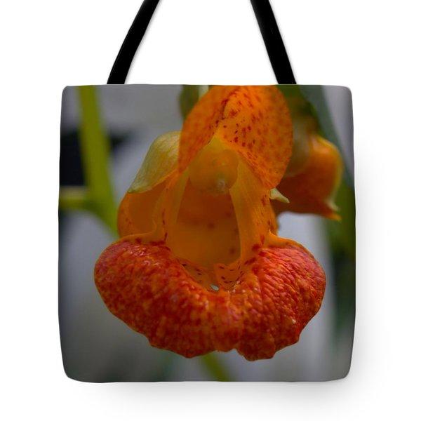 Unidetified Wildflower Tote Bag