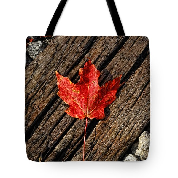 Uniquely Red Tote Bag by Pamela Baker