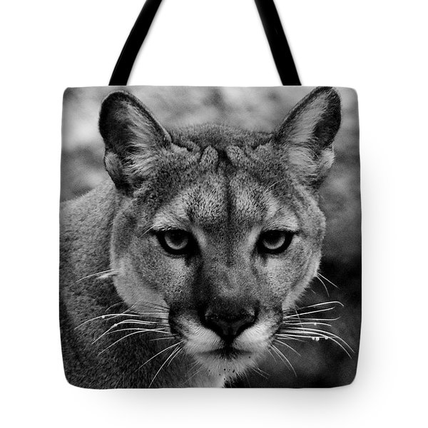 Untamed Tote Bag by Swank Photography