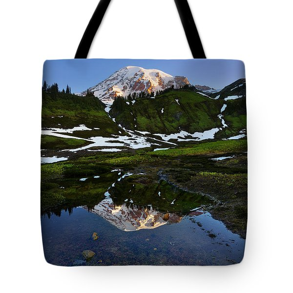 Untarnished View Tote Bag by Ryan Manuel