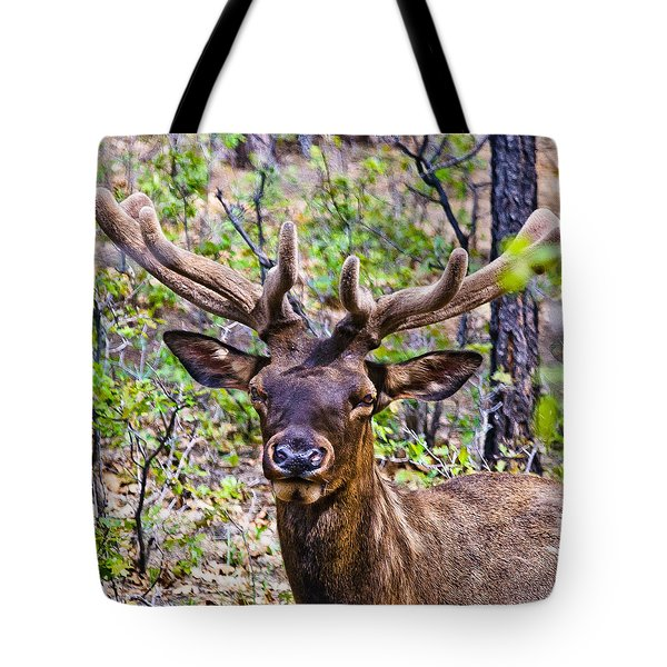 Tote Bag featuring the photograph Up Close And Personal With An Elk by Bob and Nadine Johnston