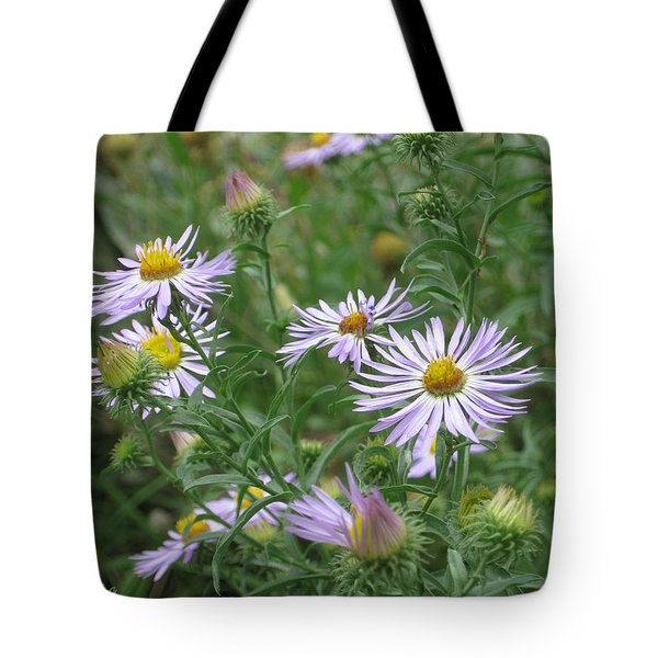 Uplifted Asters Tote Bag