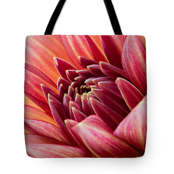 Uplifting 2 Tote Bag by Mary Jo Allen