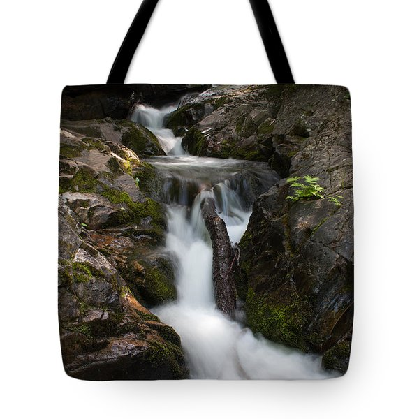 Upper Pup Creek Falls Tote Bag