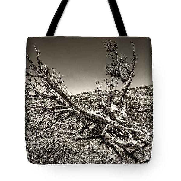 Tote Bag featuring the photograph Uprooted - Bryce Canyon Sepia by Tammy Wetzel