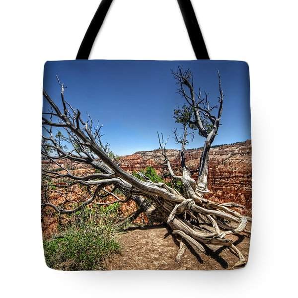 Tote Bag featuring the photograph Uprooted - Bryce Canyon by Tammy Wetzel