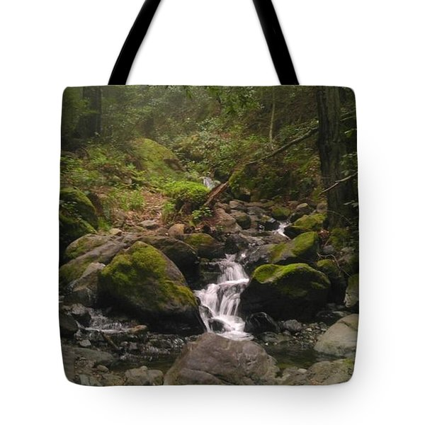 Upstream Tote Bag by Justin Moranville