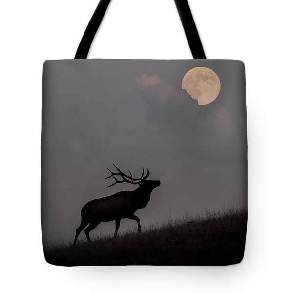 Upwardly Mobile - Yellowstone National Park Tote Bag by Sandra Bronstein