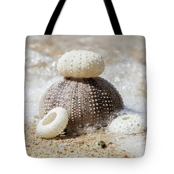 Urchin Shells On A Beach  St. Croix Tote Bag