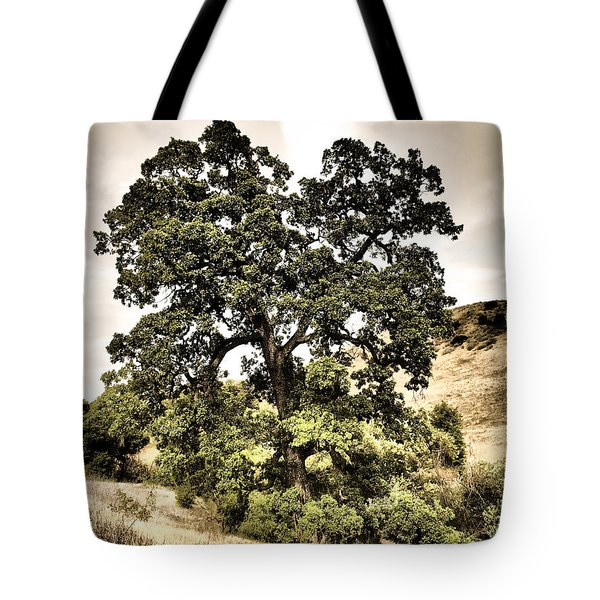 Valley Oak Tote Bag