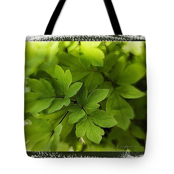 Valley Of Light Tote Bag