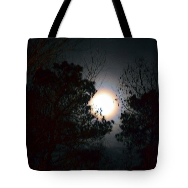 Valley Of The Moon Tote Bag by Maria Urso