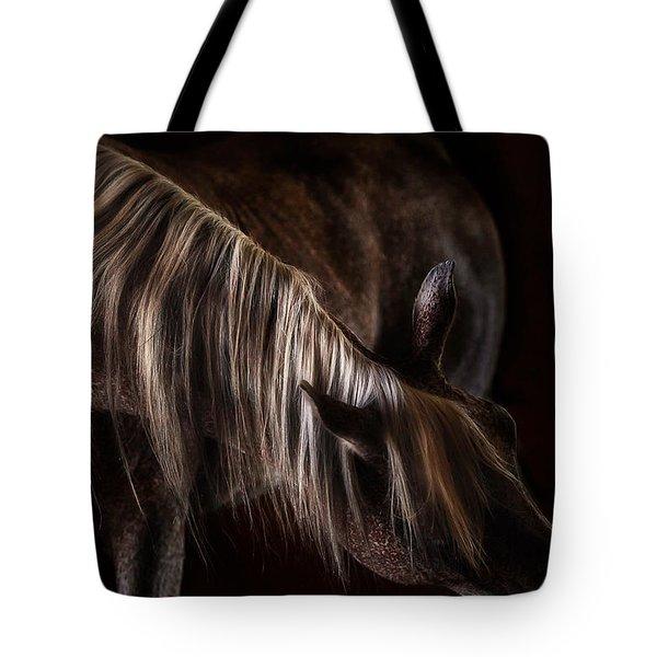 Variations Tote Bag