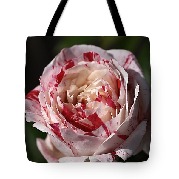 Tote Bag featuring the photograph Variegated Rose by Joy Watson