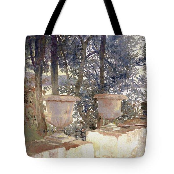 vasi a Corfu Tote Bag by Guido Borelli