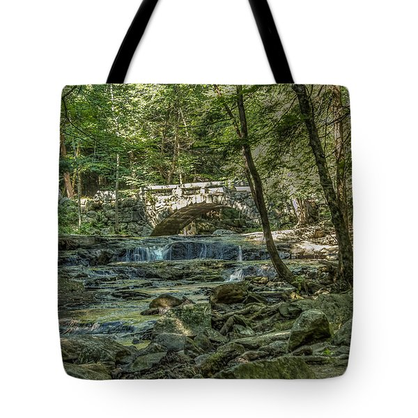 Tote Bag featuring the photograph Vaughan Woods Bridge by Jane Luxton
