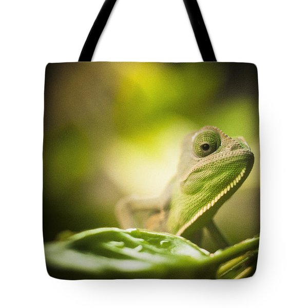 Veiled Chameleon Is Watching You Tote Bag by Bradley R Youngberg