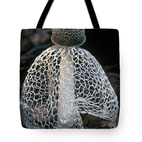 Veiled Lady Dictyophora Indusiata Tote Bag by Albert Lleal