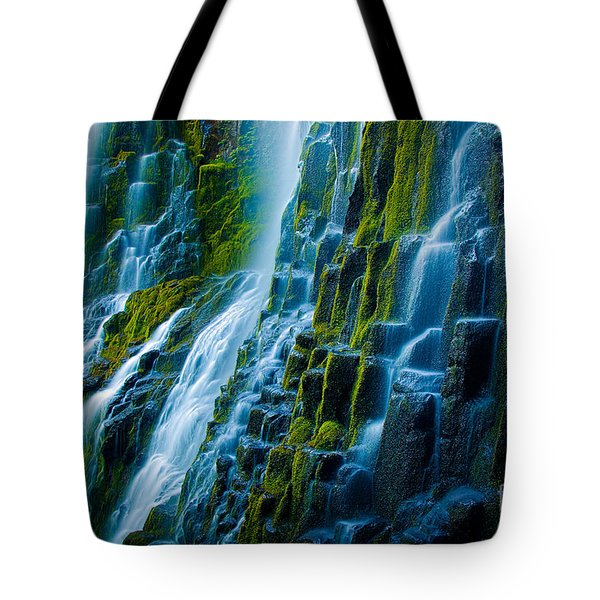 Veiled Wall Tote Bag by Inge Johnsson