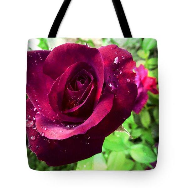 Velvet Shimmer Tote Bag by Shawna Rowe