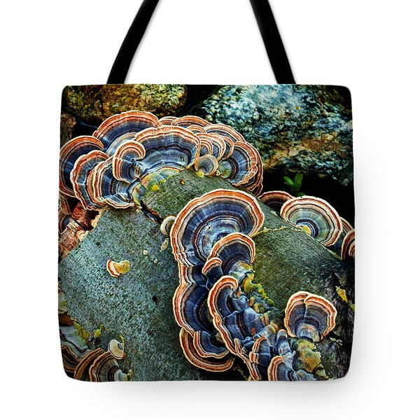 Tote Bag featuring the photograph Velvet Wild Mushrooms  by Jerry Cowart