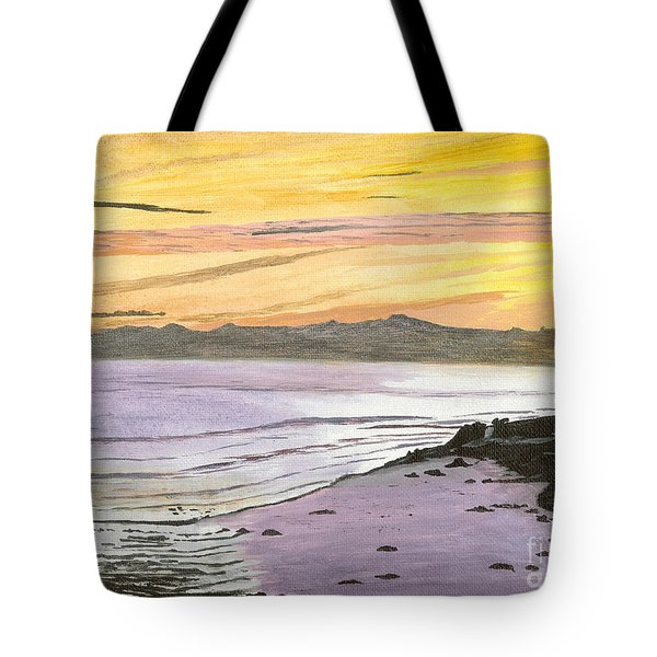 Tote Bag featuring the painting Ventura Point At Sunset by Ian Donley
