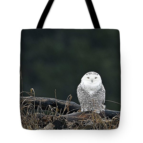 Vermont Snowy Owl Tote Bag