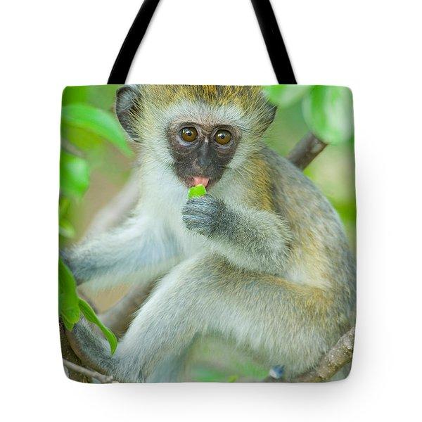 Vervet Monkey Sitting On A Branch Tote Bag