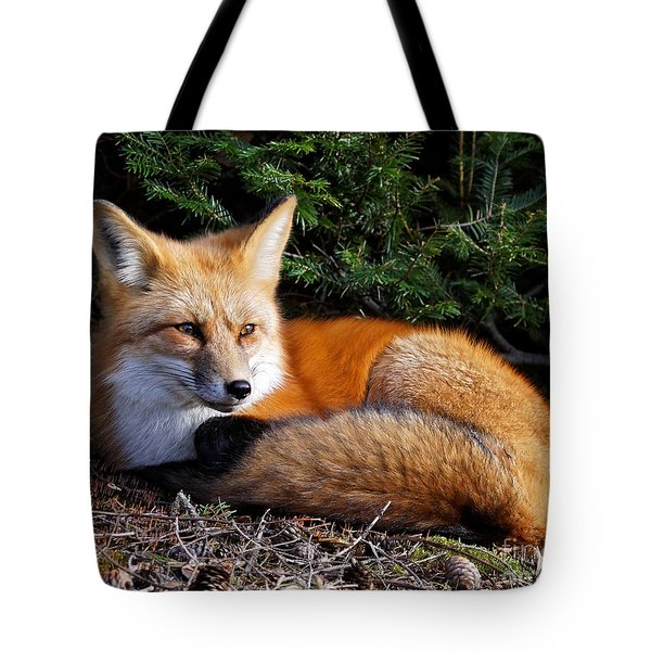 Vested Fox Tote Bag