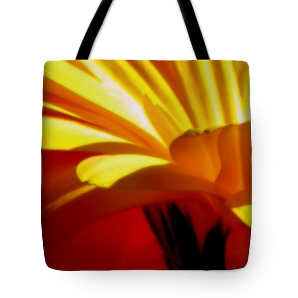 Vibrance  Tote Bag by Karen Wiles