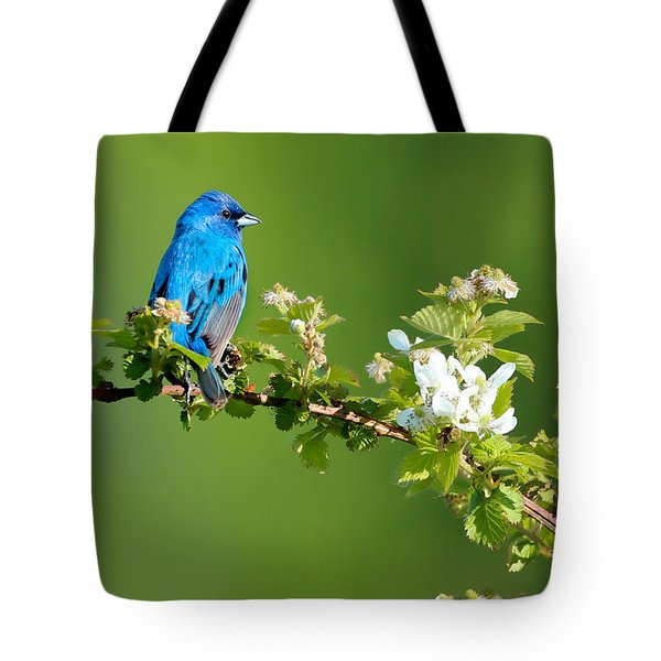 Vibrance Of Spring Tote Bag