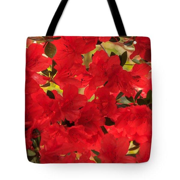 Vibrant Azalea Tote Bag