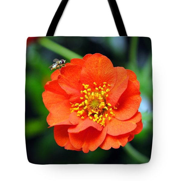 Tote Bag featuring the photograph Vibrant Pop Of Orange by Kelly Nowak