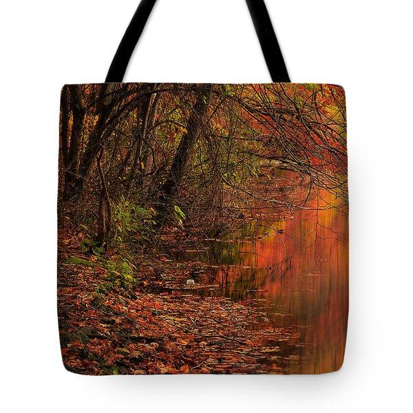 Vibrant Reflection Tote Bag