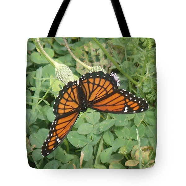 Tote Bag featuring the photograph Viceroy by Robert Nickologianis