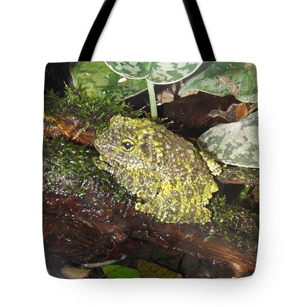 Vietnamese Mossy Frog Tote Bag by Sara  Raber