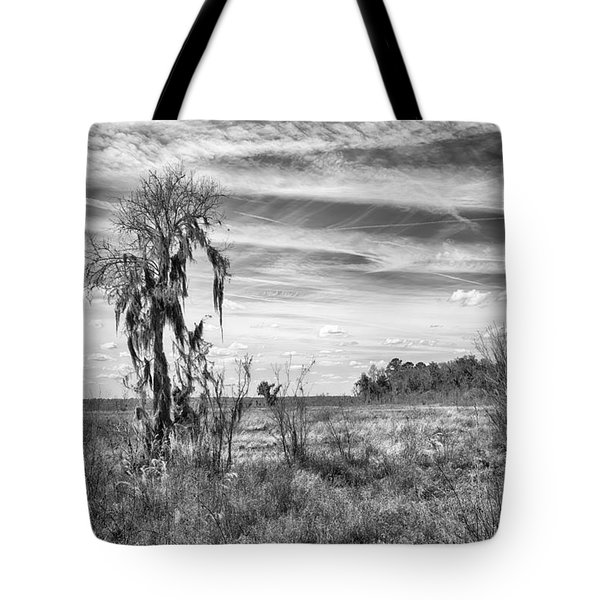 Tote Bag featuring the photograph View For The Levy by Howard Salmon
