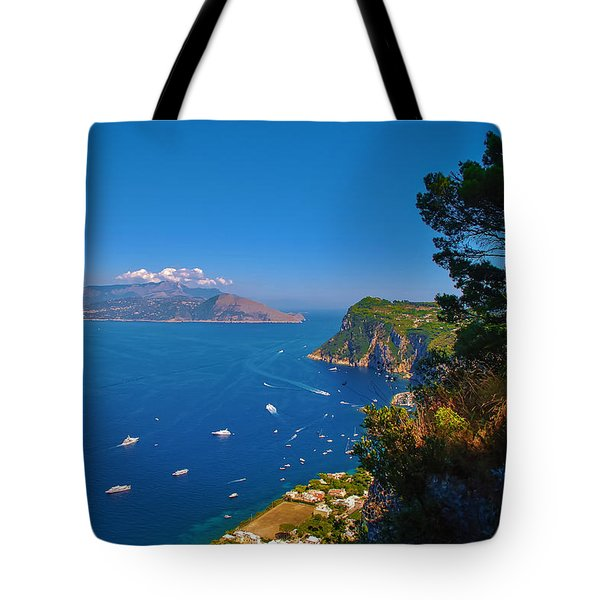 View From Capri Tote Bag by Dany Lison