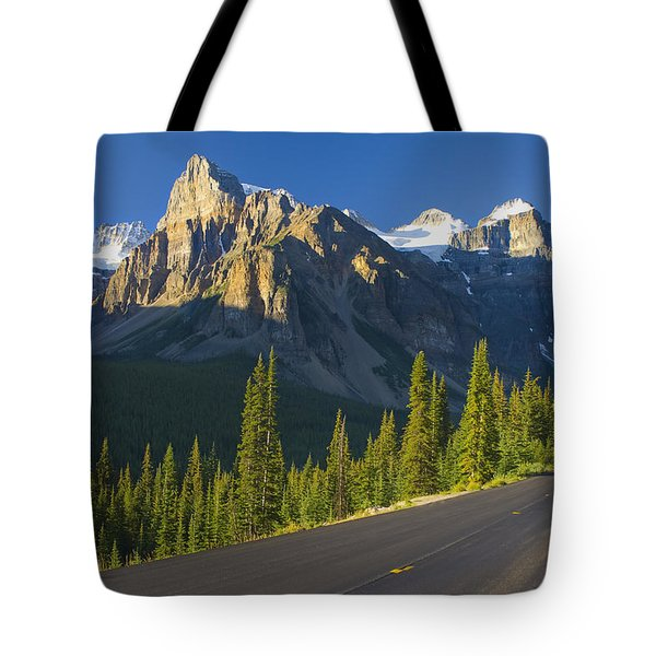 View Of Glacial Mountains And Trees Tote Bag by Laura Ciapponi
