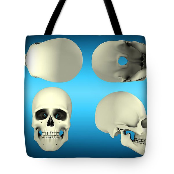 View Of Human Skull From Different Tote Bag by Stocktrek Images