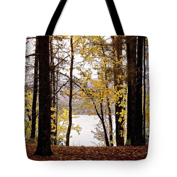 View Of  Lake Mcdonald Tote Bag