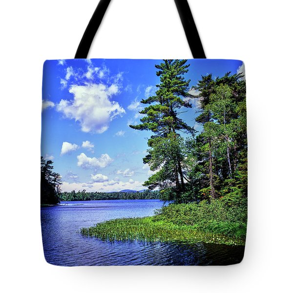 View Of The Follensby Clear Pond Tote Bag