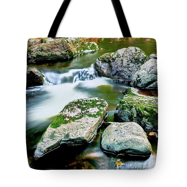 View Of The Little Carp River Tote Bag