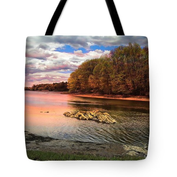 View Of The Salmon River Tote Bag