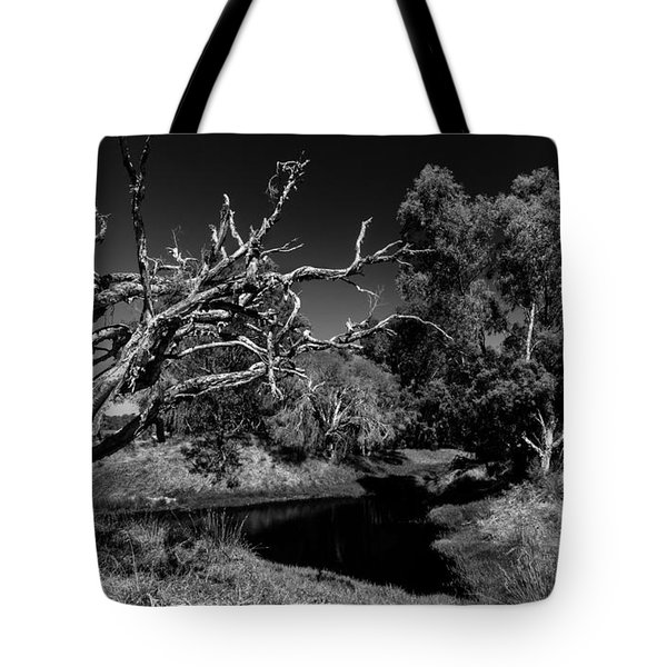 View Over North Lake Tote Bag