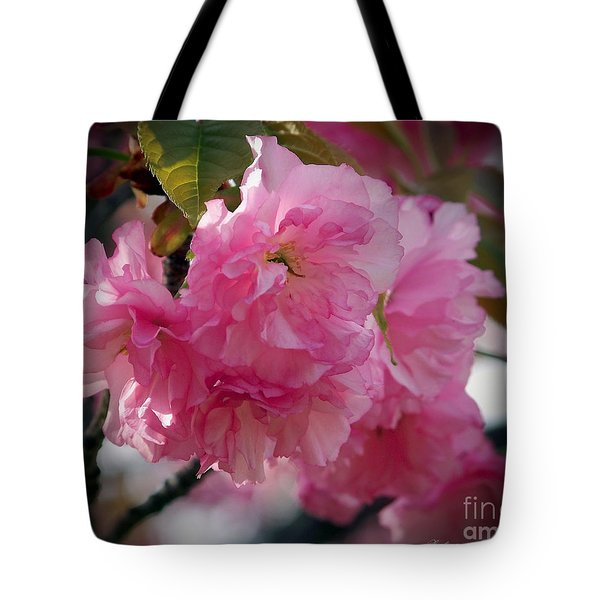 Vignette Cherry Blossom Tote Bag