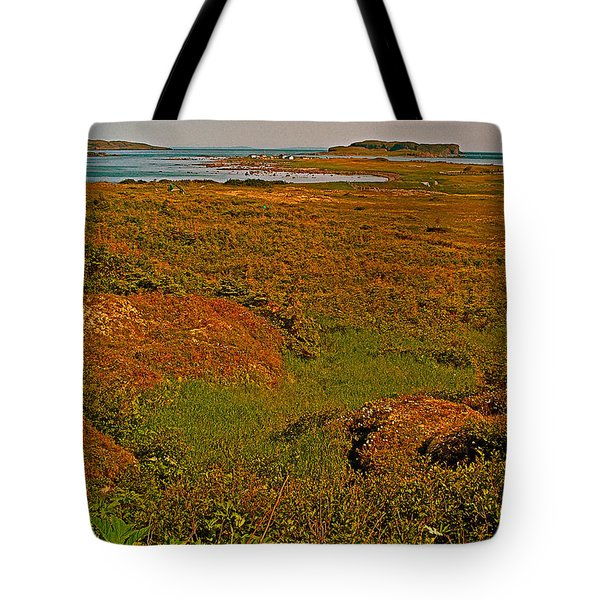 Viking Landing Point At L'anse Aux Meadows-nl Tote Bag