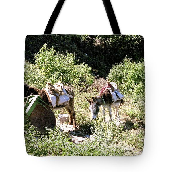 Village Transportation Tote Bag by Michael Peychich