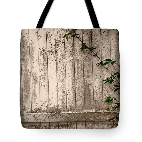 Tote Bag featuring the photograph Vine And Fence by Amanda Vouglas