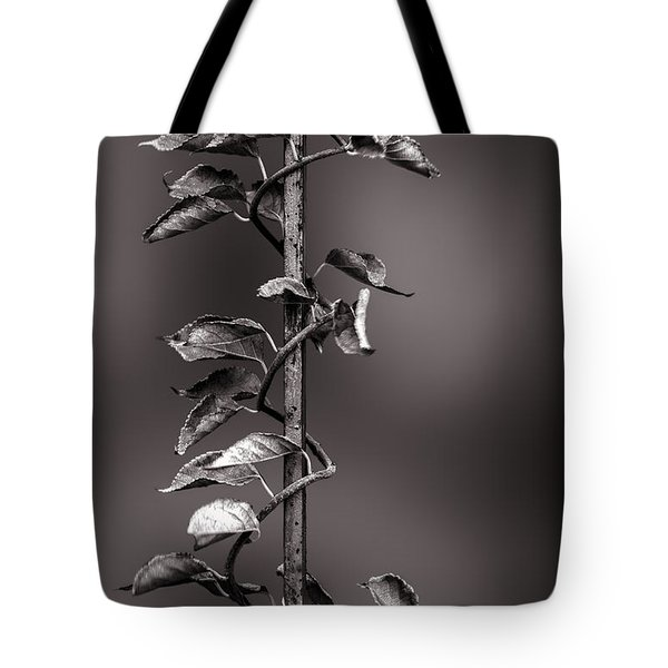 Vine On Iron Tote Bag by Bob Orsillo